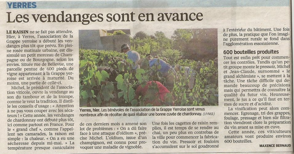 Mercredi 2 septembre 2015 vendanges du Chardonnay